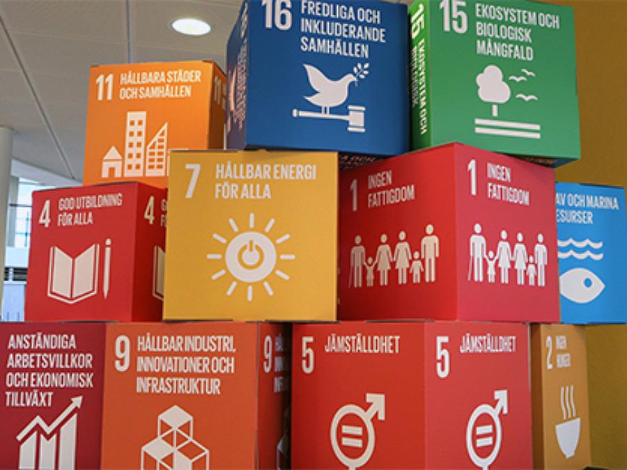 Hållbarhetsveckan 2020 i Båstads kommun covid-19-anpassas